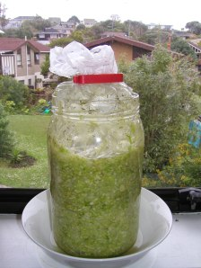 Sauerkraut covered with bag