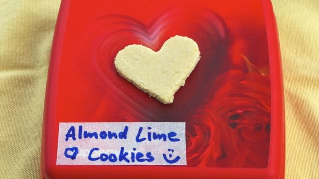 Almond Lime Cookie recipe - a versatile sweet raw treat (2/2)