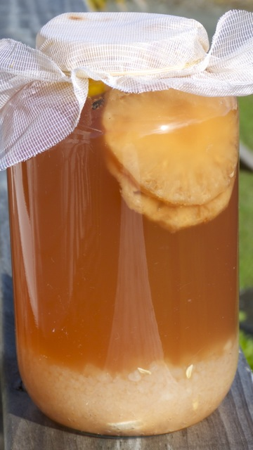 Water Kefir jar