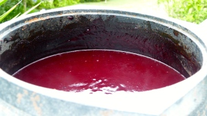 Finished plum jam